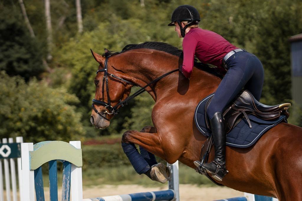 Stübben, Sattel, Pferd, Reiter, Springen, Springparcours, Reitturnier, Pferde, reiten